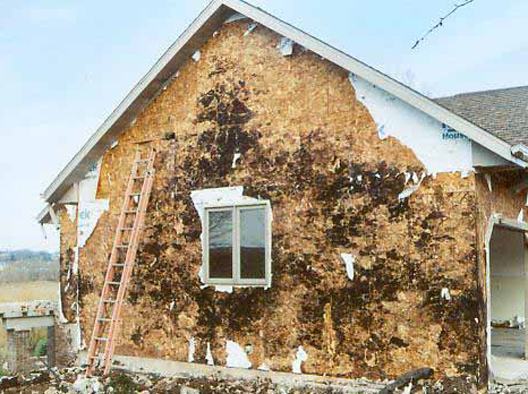 Extreme OSB Rot On Exterior Of Home