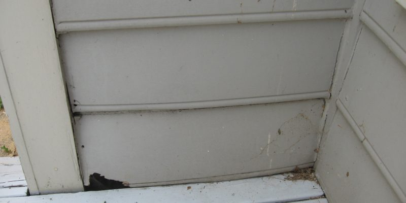 Water damage to masonite siding