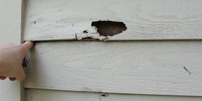 The History Of Masonite Siding And Repairs Hatch Homes