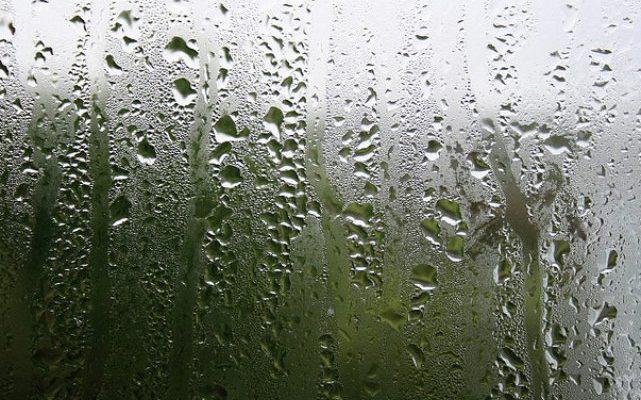 Normal Window Condensation