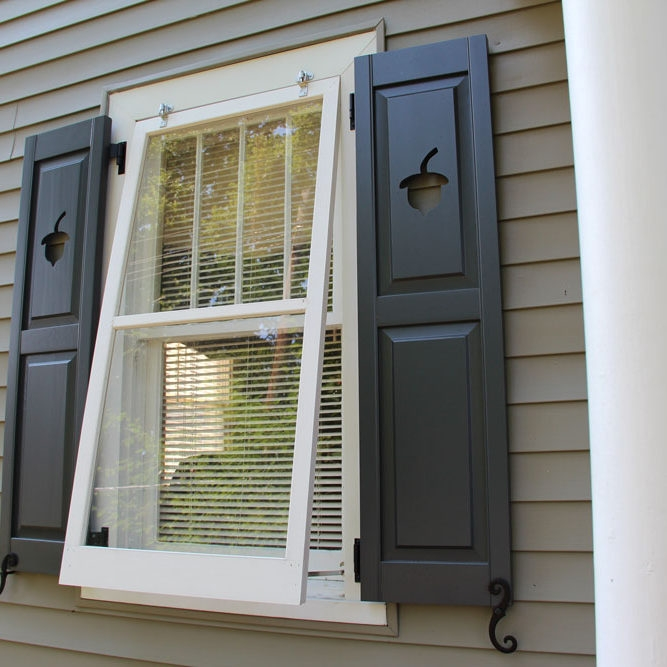 Storm window with shutters