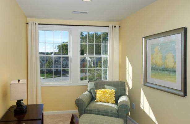 Living Room Single Hung Window