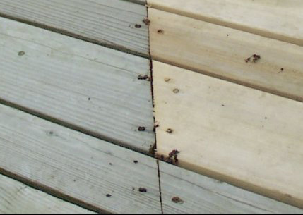 Age Of An Exterior Deck