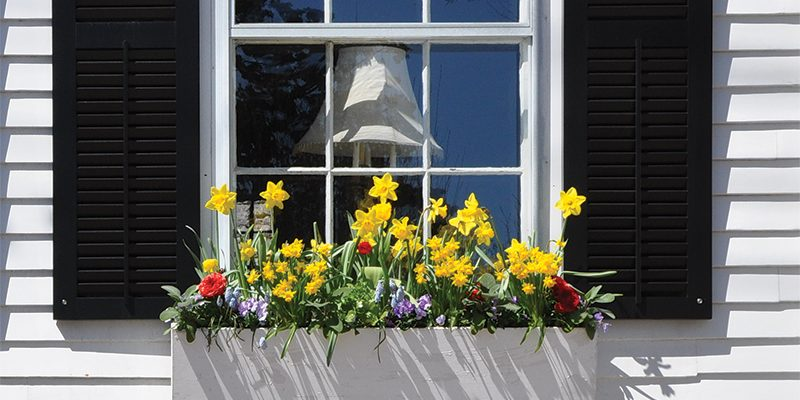 Flower Boxes To Decorate Your Home