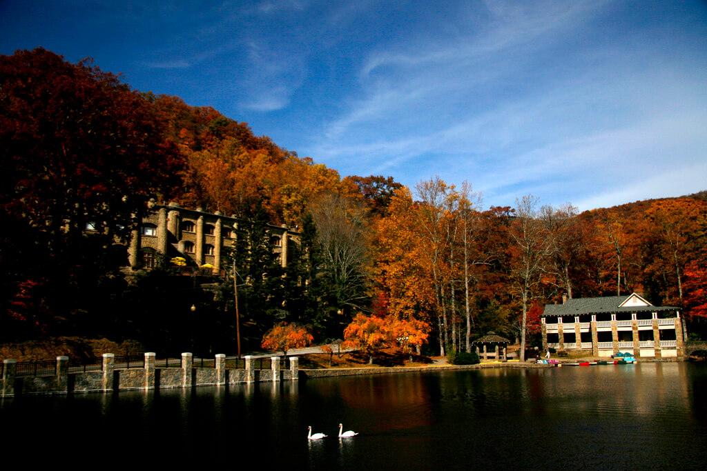 Landscape in Black Mountain, NC