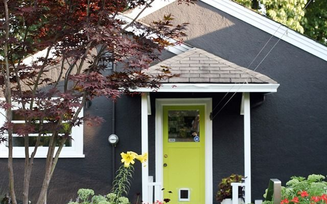 Landscaping for bold door colors