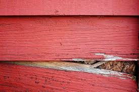 Signs Its Time To Replace Your Siding