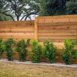 Privacy Options in backyards
