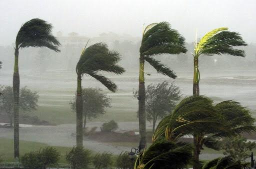 hurricane wind speed