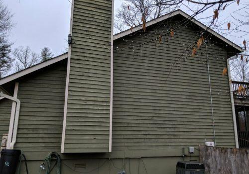 Woodpecker Damage